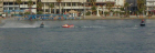 jet_ski_knocked_him_off.jpg (61739 bytes)